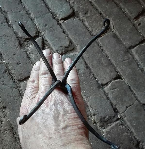hand met octopusring